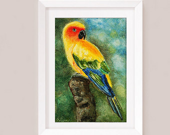 Sun Parakeet clipart #10, Download drawings