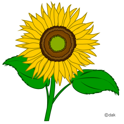 Sunflower clipart #8, Download drawings