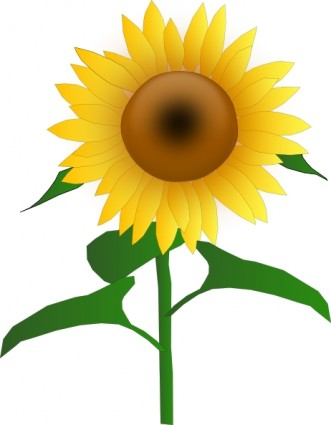 Sunflower clipart #20, Download drawings