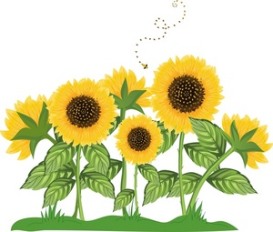 Sunflower clipart #10, Download drawings