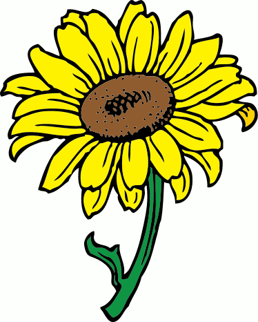 Sunflower clipart #19, Download drawings