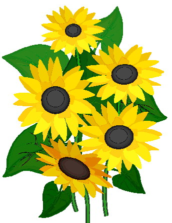 Sunflower clipart #7, Download drawings