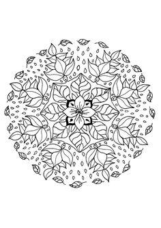 Superbe coloring #13, Download drawings