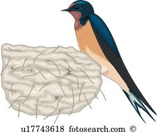 Swallow clipart #7, Download drawings