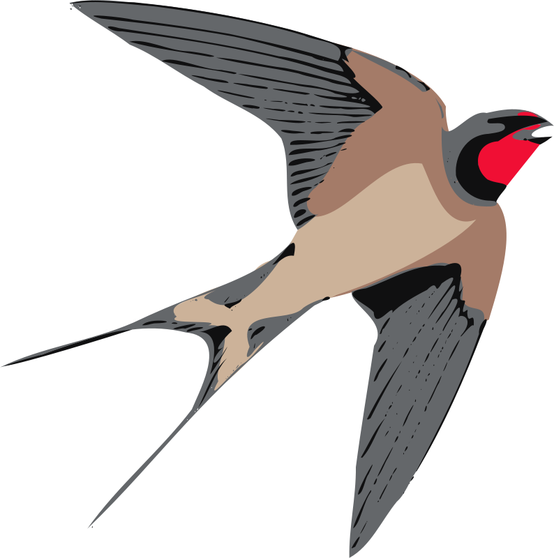 Swallow clipart #15, Download drawings