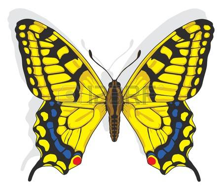 Swallowtail Butterfly clipart #15, Download drawings