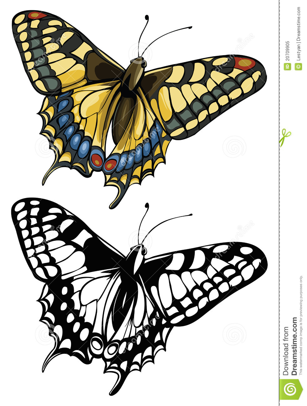 Swallowtail Butterfly clipart #6, Download drawings