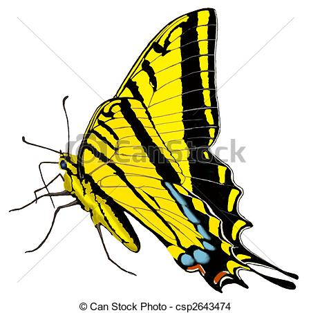 Swallowtail Butterfly clipart #2, Download drawings