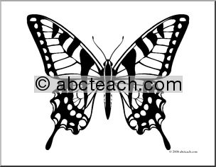 Swallowtail Butterfly clipart #17, Download drawings
