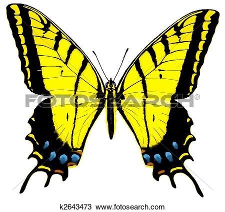 Swallowtail Butterfly clipart #11, Download drawings