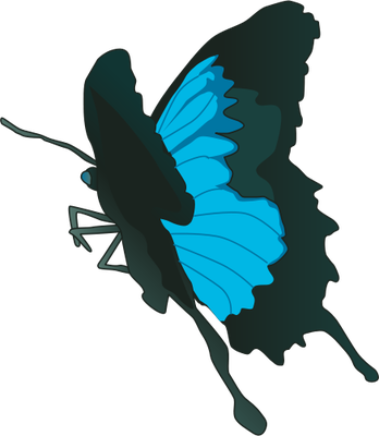 Ulysses Butterfly svg #20, Download drawings