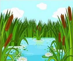 Swamp clipart #20, Download drawings