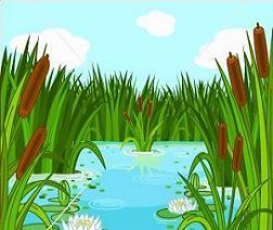 Swamp clipart #20, Download drawings