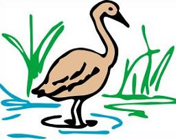 Swamp clipart #15, Download drawings