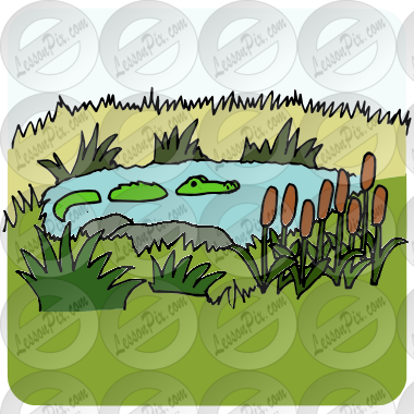 Swamp clipart #5, Download drawings