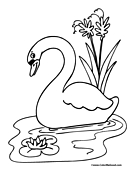 Whooper Swan coloring #15, Download drawings