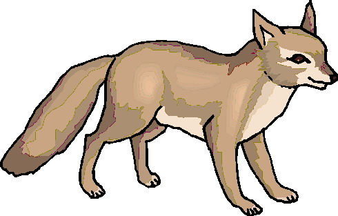 Swift Fox clipart #4, Download drawings
