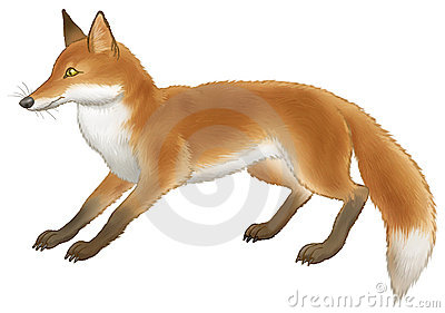 Swift Fox clipart #18, Download drawings