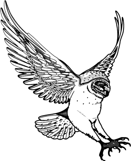 Swooping clipart #16, Download drawings