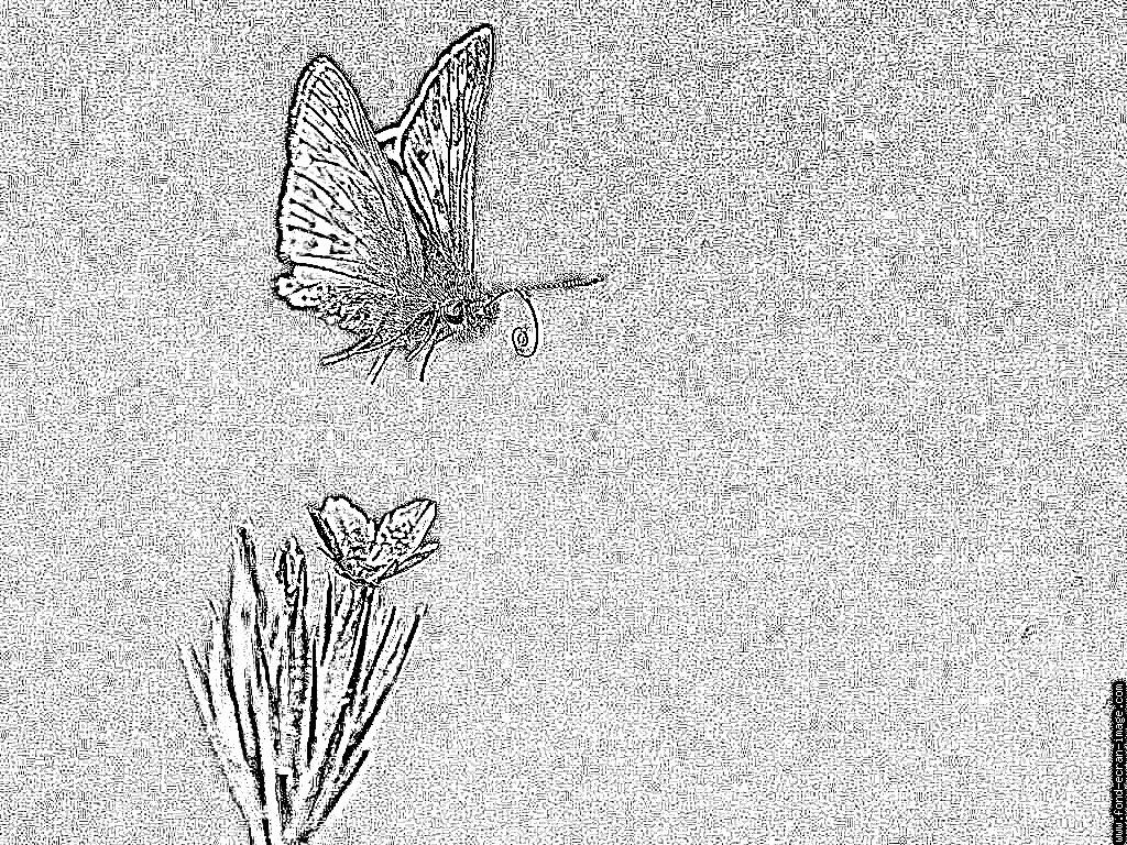Sylvan coloring #2, Download drawings