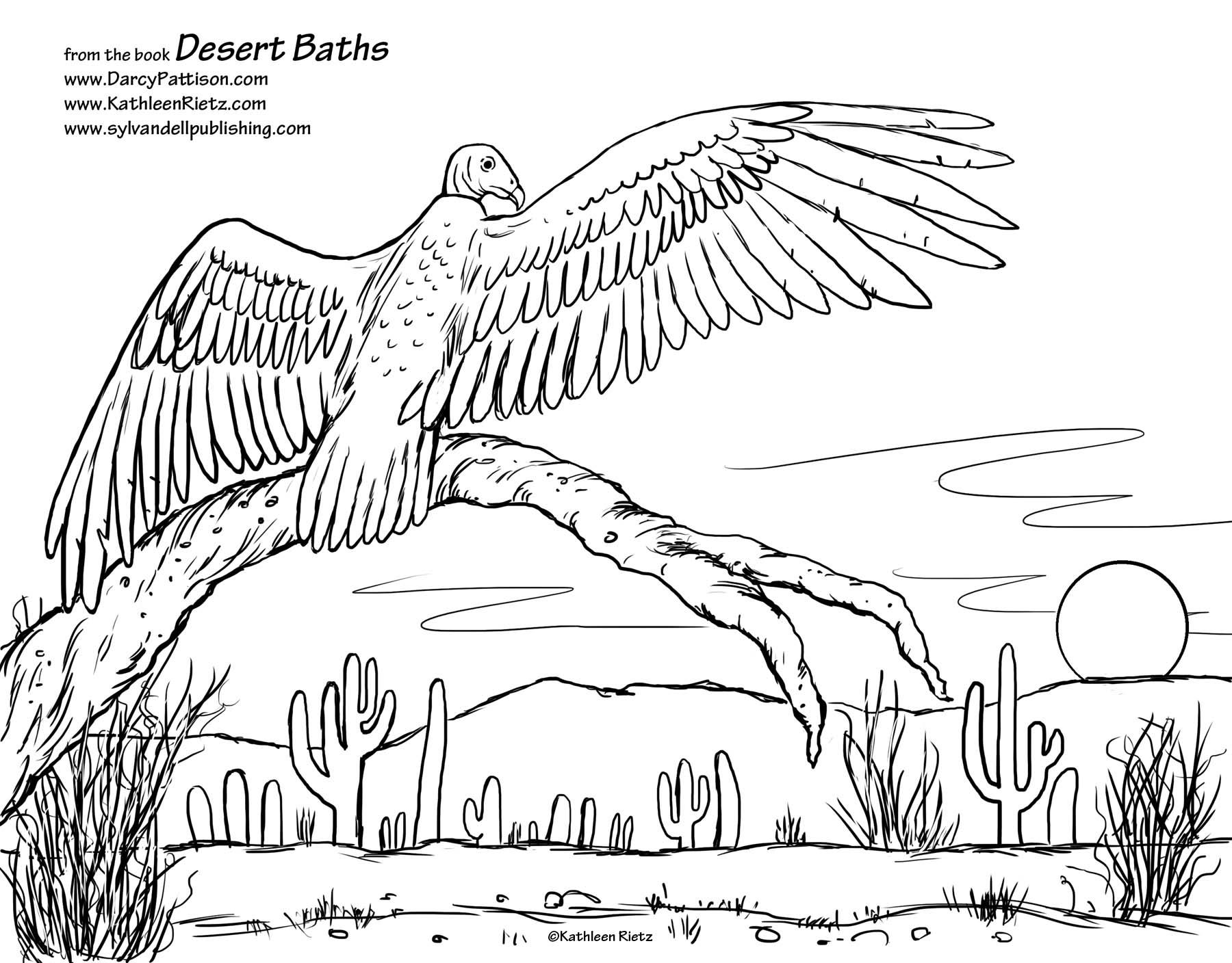 Sylvan coloring #11, Download drawings