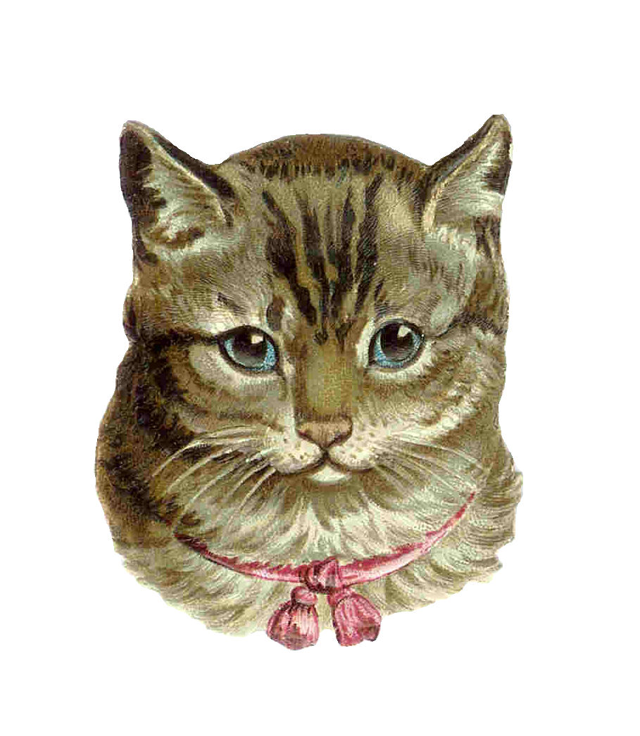 Tabby Cat clipart #20, Download drawings