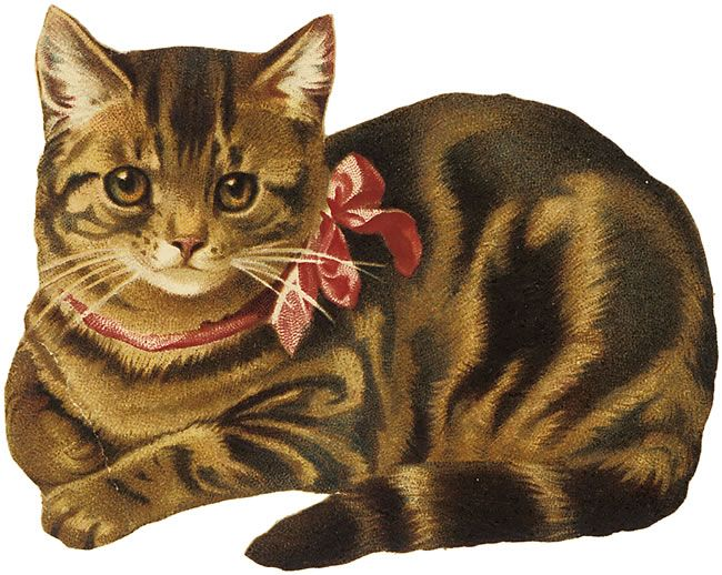 Tabby Cat clipart #19, Download drawings