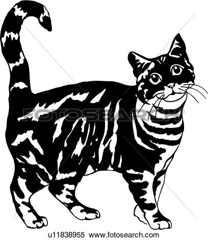 Tabby Cat clipart #17, Download drawings