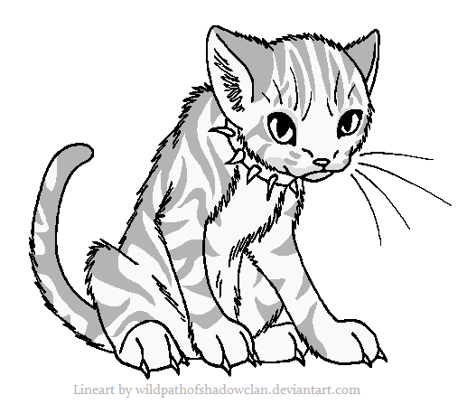 Tabby Cat coloring #5, Download drawings