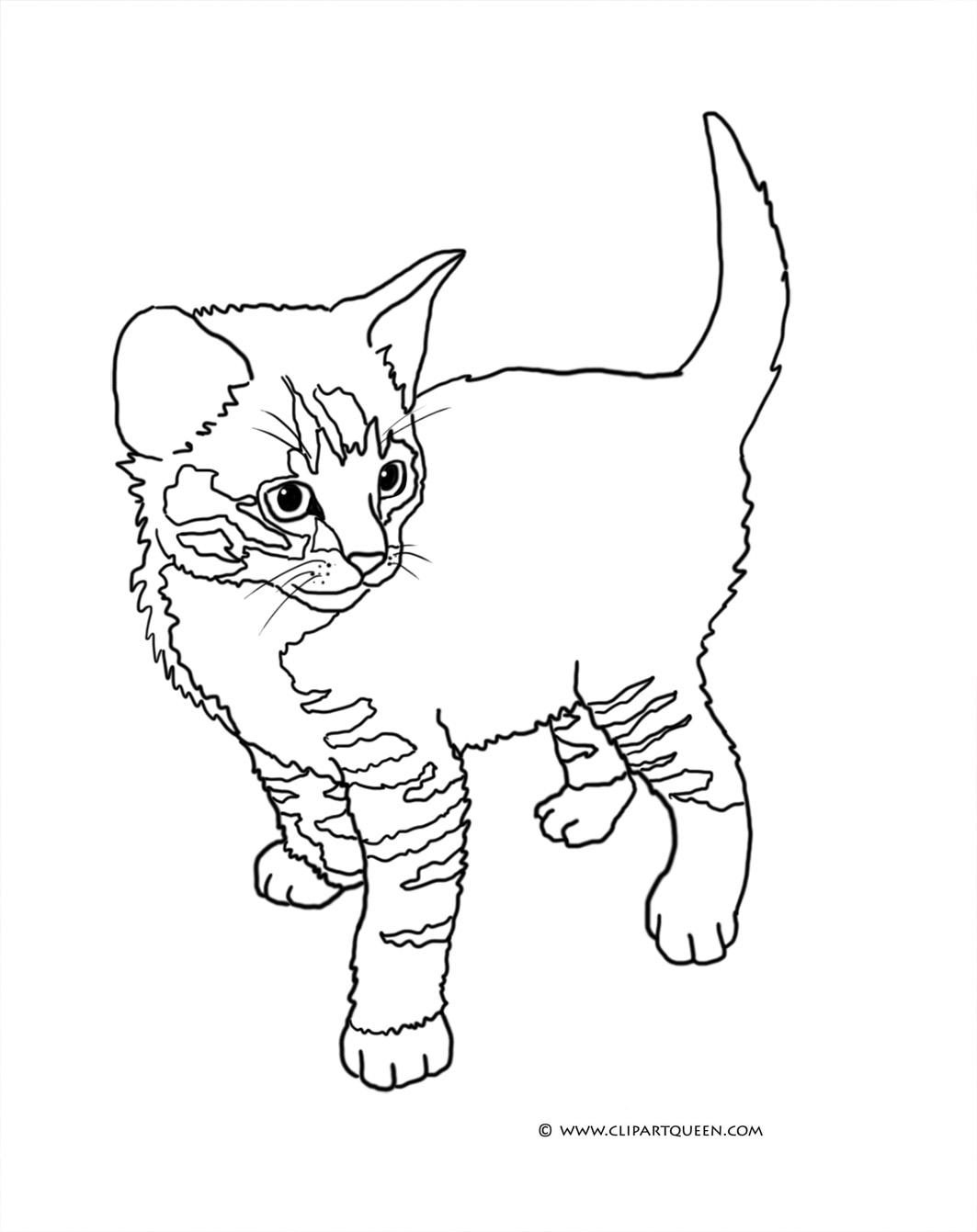 Tabby Cat coloring #19, Download drawings