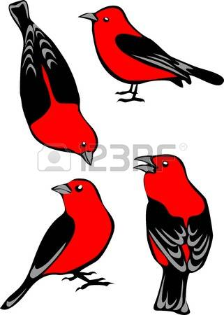 Tanager clipart #2, Download drawings