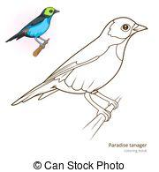 Tanager clipart #17, Download drawings
