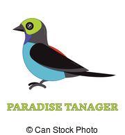 Tangara clipart #19, Download drawings