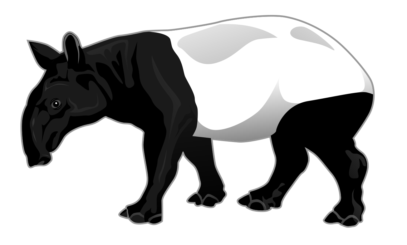 Tapir clipart #3, Download drawings
