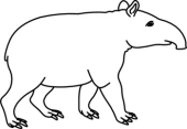 Tapir clipart #18, Download drawings