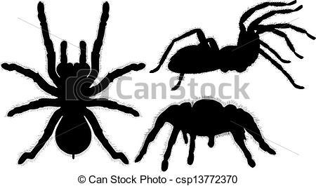 Tarantula clipart #10, Download drawings