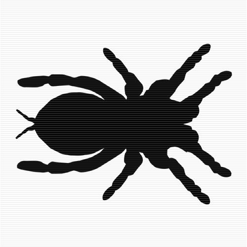 Tarantula clipart #1, Download drawings
