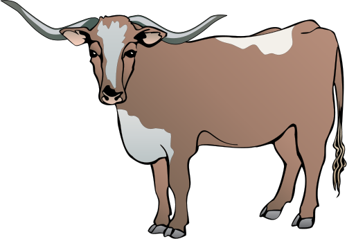 Longhorn Cattle svg #9, Download drawings