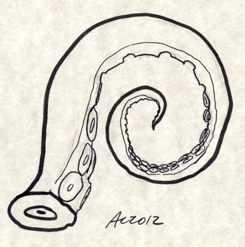 Tentacle coloring #6, Download drawings