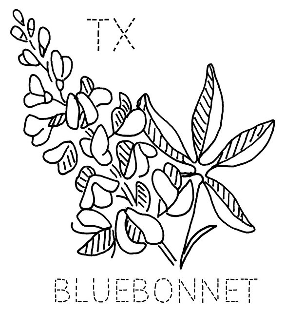 Texas Bluebonnets coloring #3, Download drawings