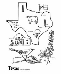 Texas Bluebonnets coloring #6, Download drawings