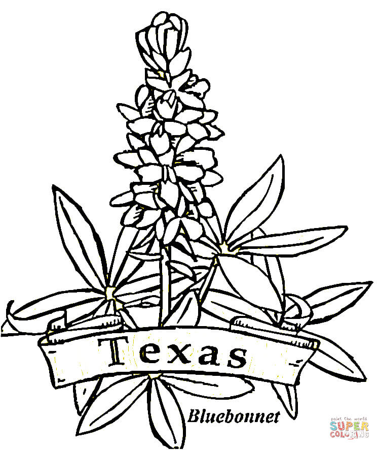 Texas coloring #3, Download drawings