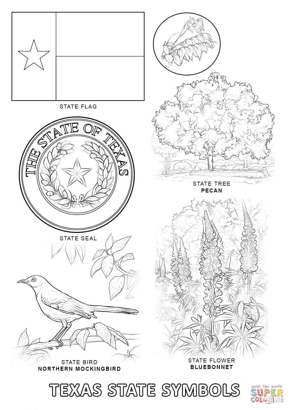 Texas coloring #5, Download drawings