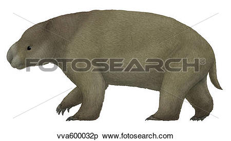 The Diprotodon clipart #19, Download drawings