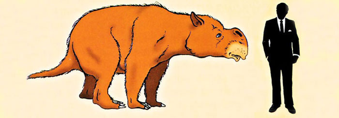 The Diprotodon clipart #16, Download drawings