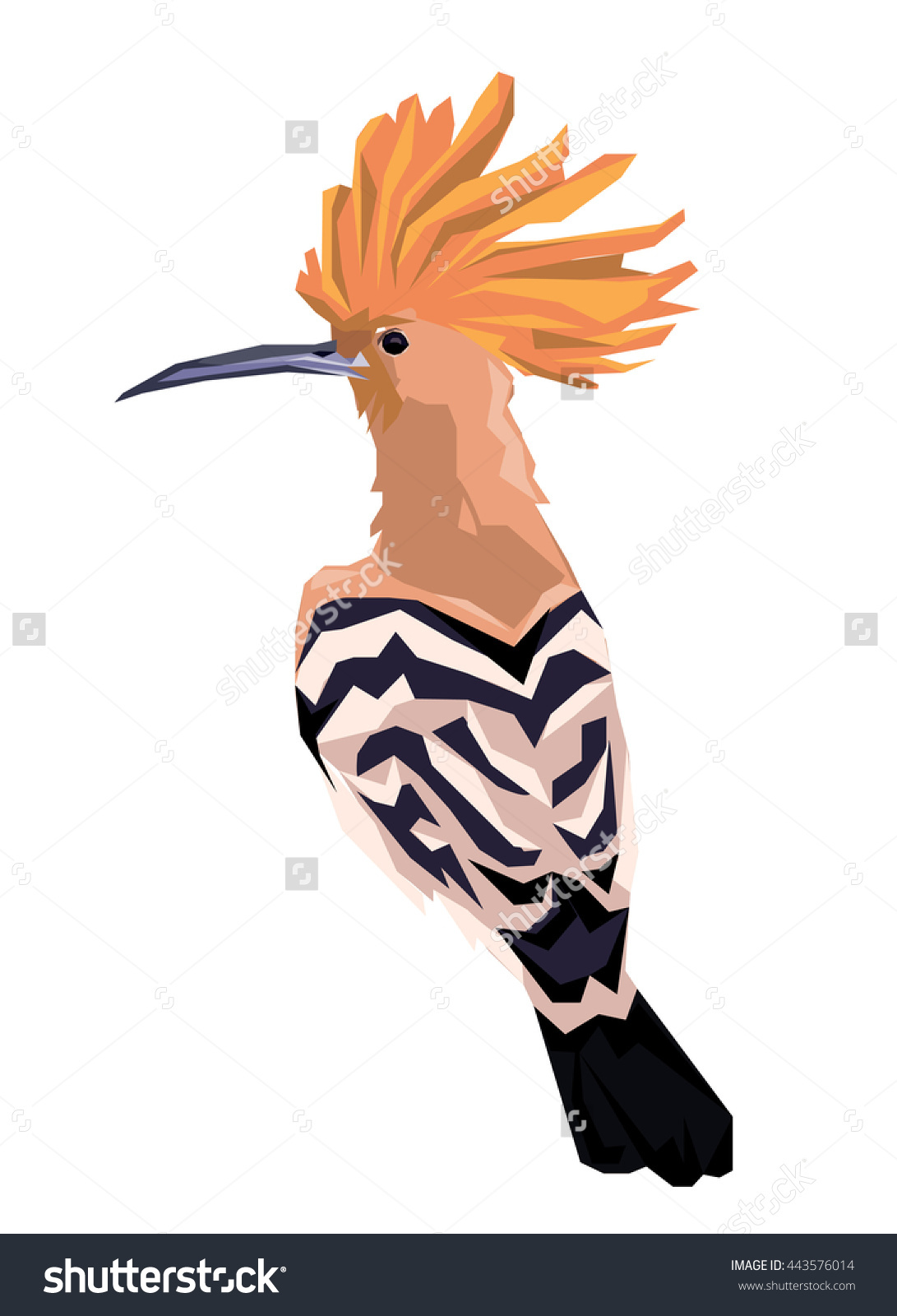 The Hoopoe Close Up clipart #2, Download drawings