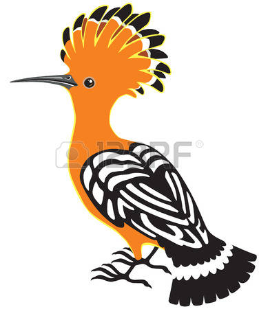 The Hoopoe Close Up clipart #19, Download drawings