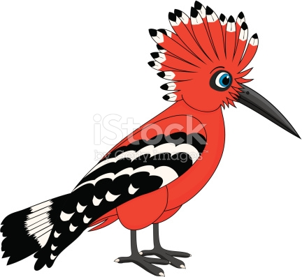 The Hoopoe Close Up clipart #9, Download drawings