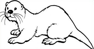 The Otter clipart #10, Download drawings