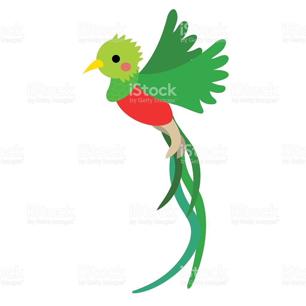 The Quetzal Of Guatamala clipart #14, Download drawings